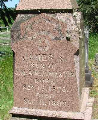 MARTIN, JAMES S - Marion County, Oregon | JAMES S MARTIN - Oregon Gravestone Photos