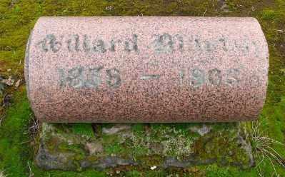 MARTIN, WILLARD - Marion County, Oregon | WILLARD MARTIN - Oregon Gravestone Photos