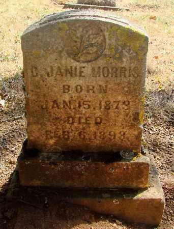 MORRIS, C JANE - Marion County, Oregon | C JANE MORRIS - Oregon Gravestone Photos