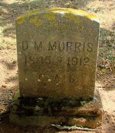 MORRIS, DAVID M - Marion County, Oregon | DAVID M MORRIS - Oregon Gravestone Photos