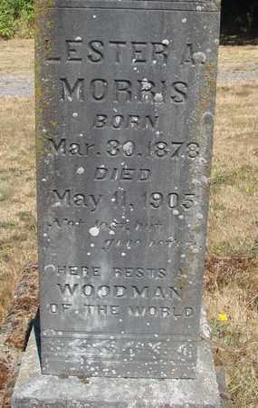 MORRIS, LESTER A - Marion County, Oregon | LESTER A MORRIS - Oregon Gravestone Photos