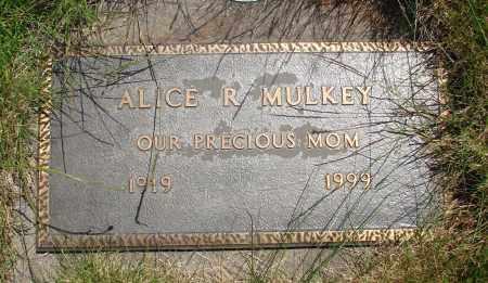 MULKEY, ALICE R - Marion County, Oregon   ALICE R MULKEY - Oregon Gravestone Photos
