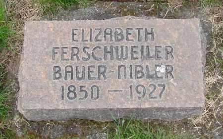 FERSCHWEILER, ELIZABETH - Marion County, Oregon   ELIZABETH FERSCHWEILER - Oregon Gravestone Photos