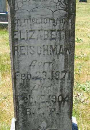 REISCHMAN, ELIZABETH - Marion County, Oregon | ELIZABETH REISCHMAN - Oregon Gravestone Photos