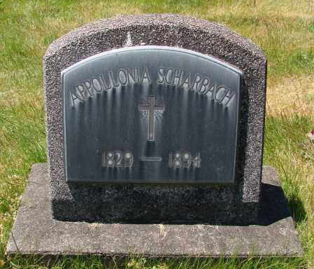 SCHARBACH, APPOLLONIA - Marion County, Oregon | APPOLLONIA SCHARBACH - Oregon Gravestone Photos