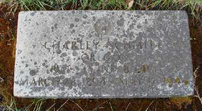 SCHMITT, CHARLEY - Marion County, Oregon | CHARLEY SCHMITT - Oregon Gravestone Photos