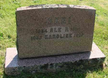JOHNSON, KAROLINE J - Marion County, Oregon   KAROLINE J JOHNSON - Oregon Gravestone Photos