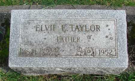 TAYLOR, ELVIE E - Marion County, Oregon | ELVIE E TAYLOR - Oregon Gravestone Photos