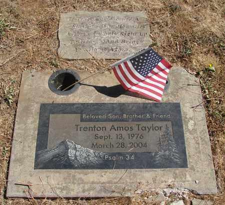 TAYLOR, TENTON AMOS - Marion County, Oregon | TENTON AMOS TAYLOR - Oregon Gravestone Photos
