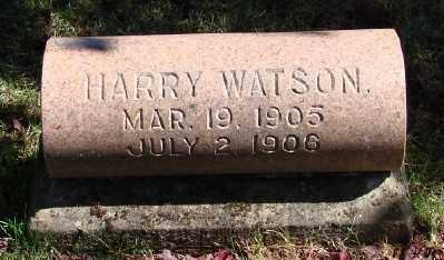 WATSON, HARRY - Marion County, Oregon | HARRY WATSON - Oregon Gravestone Photos