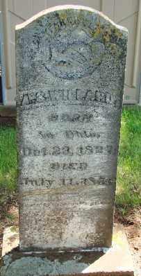 WILLARD, ABNER S - Marion County, Oregon | ABNER S WILLARD - Oregon Gravestone Photos