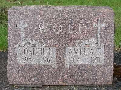 WOLF, JOSEPH H - Marion County, Oregon | JOSEPH H WOLF - Oregon Gravestone Photos