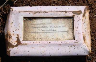 HEMMELGARN WOOD, CAROL ANN - Marion County, Oregon | CAROL ANN HEMMELGARN WOOD - Oregon Gravestone Photos