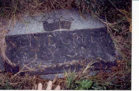 GREER TAYLOR, NETTIE G. - Multnomah County, Oregon | NETTIE G. GREER TAYLOR - Oregon Gravestone Photos
