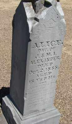 ALEXANDER, ALICE - Polk County, Oregon | ALICE ALEXANDER - Oregon Gravestone Photos