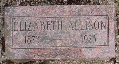 ALLISON, ELIZABETH - Polk County, Oregon | ELIZABETH ALLISON - Oregon Gravestone Photos