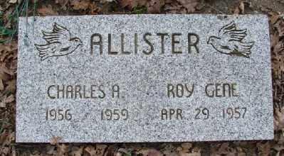 ALLISTER, ROY GENE - Polk County, Oregon | ROY GENE ALLISTER - Oregon Gravestone Photos