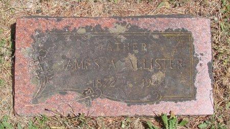 ALLISTER, JAMES ALLEN - Polk County, Oregon | JAMES ALLEN ALLISTER - Oregon Gravestone Photos