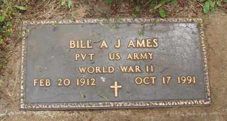 AMES, BILL A J - Polk County, Oregon | BILL A J AMES - Oregon Gravestone Photos