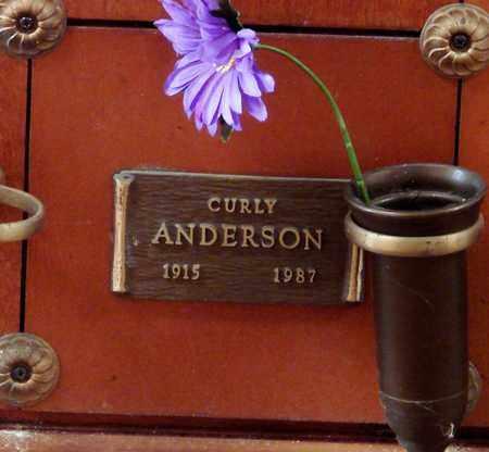 ANDERSON, CURLY - Polk County, Oregon | CURLY ANDERSON - Oregon Gravestone Photos