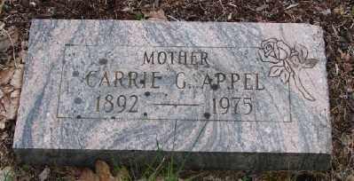 APPEL, CARRIE G - Polk County, Oregon | CARRIE G APPEL - Oregon Gravestone Photos