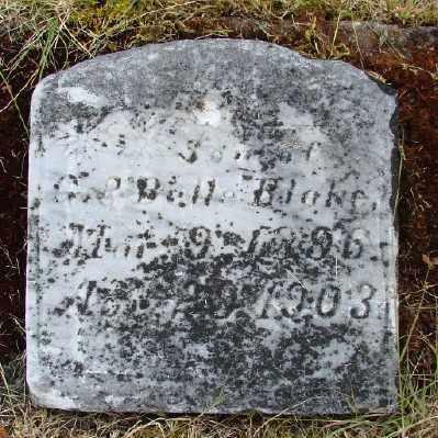 BLAKE, SON - Polk County, Oregon | SON BLAKE - Oregon Gravestone Photos