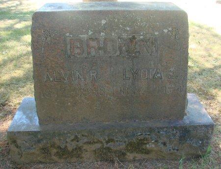OWENS BROWN, LYDIA E - Polk County, Oregon | LYDIA E OWENS BROWN - Oregon Gravestone Photos