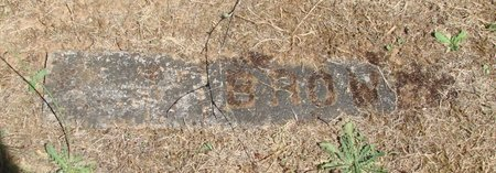 BROWN, LEO - Polk County, Oregon | LEO BROWN - Oregon Gravestone Photos