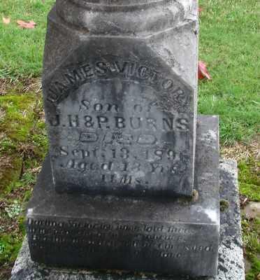 BURNS, JAMES VICTOR - Polk County, Oregon | JAMES VICTOR BURNS - Oregon Gravestone Photos