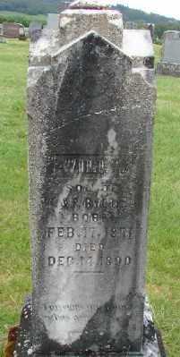 BYERLEY, WILLY - Polk County, Oregon   WILLY BYERLEY - Oregon Gravestone Photos