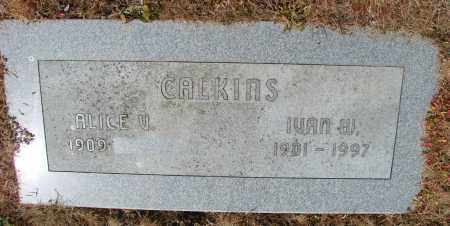 CALKINS, ALICE V - Polk County, Oregon | ALICE V CALKINS - Oregon Gravestone Photos