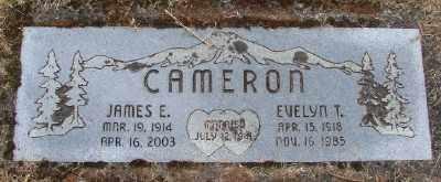 CAMERON, EVELYN T - Polk County, Oregon   EVELYN T CAMERON - Oregon Gravestone Photos