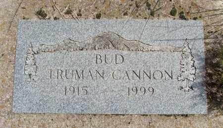 CANNON, TRUMAN - Polk County, Oregon | TRUMAN CANNON - Oregon Gravestone Photos