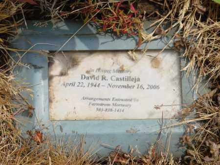 CASTILLEJA, DAVID R - Polk County, Oregon | DAVID R CASTILLEJA - Oregon Gravestone Photos