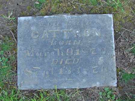 CATTRON, LUCI LULU - Polk County, Oregon   LUCI LULU CATTRON - Oregon Gravestone Photos