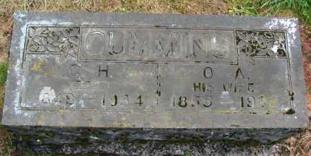 CUMMINS, OLIVE A - Polk County, Oregon | OLIVE A CUMMINS - Oregon Gravestone Photos