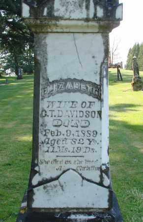 DAVIDSON, ELIZABETH - Polk County, Oregon | ELIZABETH DAVIDSON - Oregon Gravestone Photos