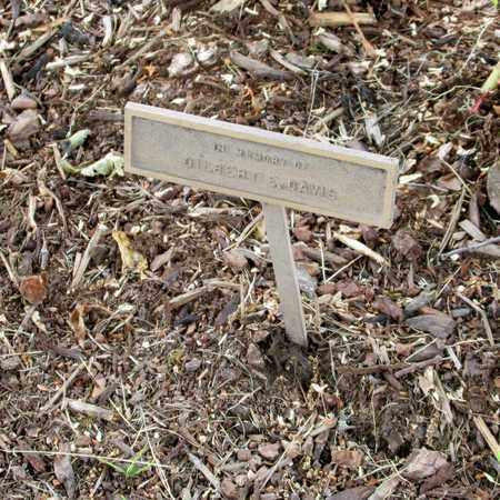 DAVIS, GILBERT E - Polk County, Oregon | GILBERT E DAVIS - Oregon Gravestone Photos