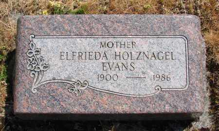 EVANS, ELFRIEDA - Polk County, Oregon | ELFRIEDA EVANS - Oregon Gravestone Photos