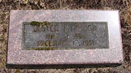 FITZHUGH, SOLOMON LESTER - Polk County, Oregon | SOLOMON LESTER FITZHUGH - Oregon Gravestone Photos