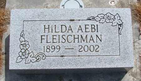 AEBI FLEISCHMAN, HILDA - Polk County, Oregon | HILDA AEBI FLEISCHMAN - Oregon Gravestone Photos