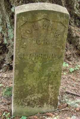 GRAHAM (CW), ALFRED B - Polk County, Oregon | ALFRED B GRAHAM (CW) - Oregon Gravestone Photos