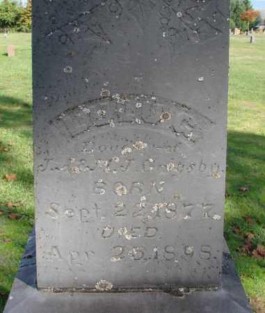 GRIGSBY, LULU G - Polk County, Oregon   LULU G GRIGSBY - Oregon Gravestone Photos