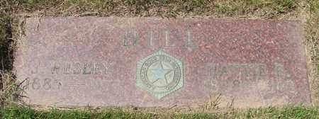 HILL, HATTIE E - Polk County, Oregon | HATTIE E HILL - Oregon Gravestone Photos