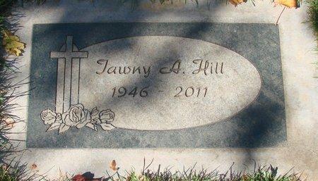 HILL, TAWNY A - Polk County, Oregon | TAWNY A HILL - Oregon Gravestone Photos