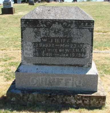 DE LONG, NANCY JANE - Polk County, Oregon | NANCY JANE DE LONG - Oregon Gravestone Photos