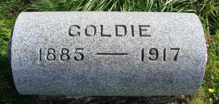 IRVINE, GOLDIE - Polk County, Oregon   GOLDIE IRVINE - Oregon Gravestone Photos