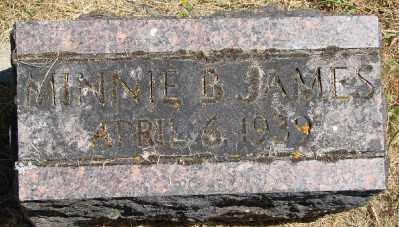 JAMES, MINNIE B - Polk County, Oregon | MINNIE B JAMES - Oregon Gravestone Photos