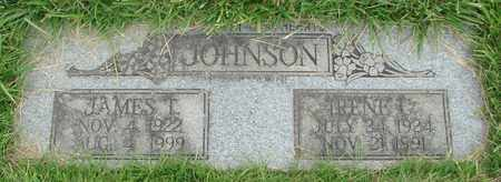 JOHNSON, IRENE - Polk County, Oregon | IRENE JOHNSON - Oregon Gravestone Photos
