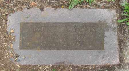 LEWIS, GEORGE W - Polk County, Oregon | GEORGE W LEWIS - Oregon Gravestone Photos